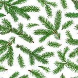 Teste padrão sem emenda verde realístico dos ramos de árvore do abeto no fundo branco Natal, símbolo do ano novo Fotos de Stock Royalty Free