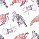 Teste padrão subaquático do mar Tartarugas de mar e medusa Oceano Fotos de Stock