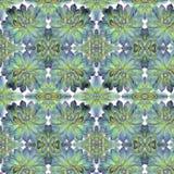 Teste padrão suculento da planta do cacto no fundo branco Imagem de Stock Royalty Free