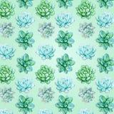 Teste padrão suculento em uma luz - fundo verde ilustração royalty free