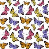 Teste padrão tirado da borboleta mão sem emenda Imagens de Stock