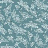 Teste padrão tirado do vetor mão sem emenda com borboletas, libélulas, besouros, erros e mothes da fantasia Fotografia de Stock Royalty Free