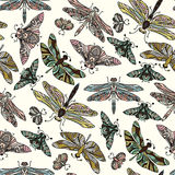 Teste padrão tirado do vetor mão sem emenda com borboletas, libélulas, besouros, erros e mothes da fantasia Fotografia de Stock