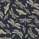 Teste padrão tirado do vetor mão sem emenda com borboletas, libélulas, besouros, erros e mothes da fantasia Imagens de Stock Royalty Free