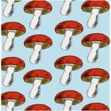 Teste padrão tirado mão com cogumelos do outono Fotografia de Stock