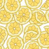 Teste padrão tirado mão do limão Imagens de Stock