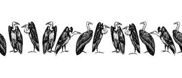 Teste padrão tirado mão dos abutres Fotos de Stock Royalty Free