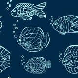 Teste padrão tirado mão dos peixes Imagem de Stock Royalty Free