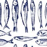 Teste padrão tirado mão dos peixes Imagem de Stock