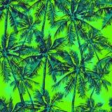 Teste padrão tropical Fotografia de Stock