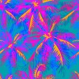 Teste padrão tropical 18 Fotografia de Stock