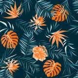 Teste padrão tropical Fotos de Stock
