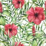 Teste padrão tropical da aquarela com hibiskus Flores pintados à mão com as folhas de palmeira isoladas no fundo branco botanical ilustração stock