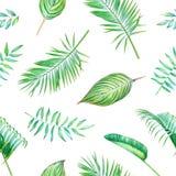 Teste padrão tropical da aquarela sem emenda Fotografia de Stock