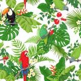 Teste padrão tropical dos pássaros e de flores ilustração stock