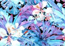 Teste padrão tropical Palma de Tailândia da aquarela, monstera, hibiscus, árvore de banana ilustração do vetor