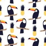 Teste padrão tropical sem emenda com tucanos e abacaxis no fundo branco Imagem de Stock