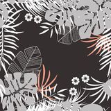 Teste padrão tropical sem emenda do verão com folhas de palmeira e plantas do monstera Fotografia de Stock
