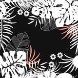 Teste padrão tropical sem emenda do verão com folhas de palmeira e plantas do monstera Imagem de Stock