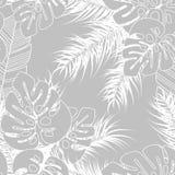 Teste padrão tropical sem emenda do verão com folhas de palmeira e plantas do monstera Fotografia de Stock Royalty Free