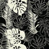 Teste padrão tropical sem emenda do verão com folhas de palmeira e plantas do monstera Imagens de Stock Royalty Free