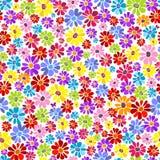 Teste padrão vívido floral sem emenda ilustração do vetor
