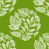 Teste padrão verde com folhas laçado ilustração do vetor