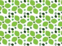 Teste padrão verde da folha Imagem de Stock