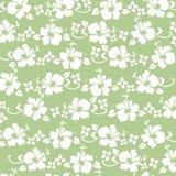Teste padrão verde do hibiscus Imagem de Stock Royalty Free