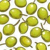 Teste padrão verde-oliva do vetor fotografia de stock royalty free