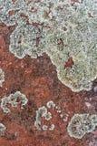 Teste padrão vermelho da textura do fundo da pedra da rocha Imagem de Stock