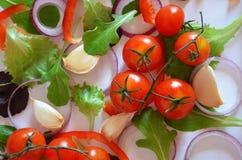 Teste padr?o colorido feito dos tomates, Ruccola dos ingredientes da salada, an?is de cebola roxa, pimenta doce vermelha, piment? foto de stock