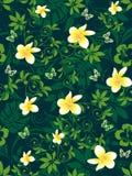 Teste padr?o de flores tropical Imagem de Stock