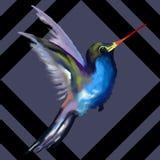Teste padr?o sem emenda Colibri, pintura da aquarela ilustração stock