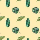 Teste padr?o sem emenda da aquarela desenhado ? m?o Folhas tropicais verdes ilustração stock