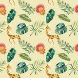 Teste padr?o sem emenda da aquarela desenhado ? m?o Folhas tropicais verdes e animais selvagens: monstera, girafa, leão ilustração royalty free