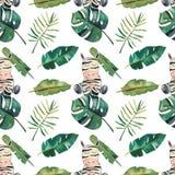 Teste padr?o sem emenda da aquarela desenhado ? m?o Folhas tropicais verdes e uma zebra no fundo branco ilustração royalty free