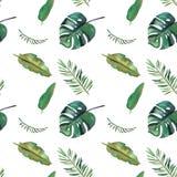 Teste padr?o sem emenda da aquarela desenhado ? m?o Folhas tropicais verdes no fundo branco ilustração stock