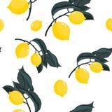 Teste padr?o sem emenda do ver?o tropico com ramos dos lim?es ilustração stock