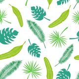 Teste padr?o sem emenda do vetor das folhas tropicais ilustração do vetor