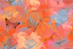 Teste padr?o sem emenda floral com flores e borboleta do jardim imagem de stock
