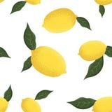 Teste padr?o sem emenda tropical com lim?es amarelos ilustração royalty free