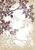Teste padrão da filial de árvore Imagens de Stock Royalty Free