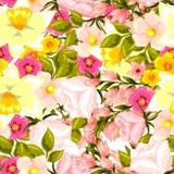 Teste padrão de flor Imagem de Stock