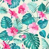 Teste padrão de flor tropical Fotos de Stock Royalty Free