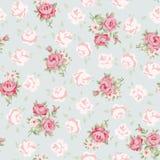 Teste padrão de Rosa Imagem de Stock