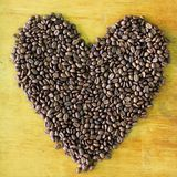 Teste padrão do feijão de café Imagens de Stock