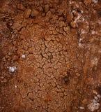 Teste padrão do solo rachado seco Fotografia de Stock