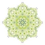 Teste padrão floral para seu projeto, conceito da mola Imagem de Stock