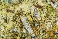 Teste padrão intrincado do granito amarelo, verde, e do ouro Imagens de Stock Royalty Free